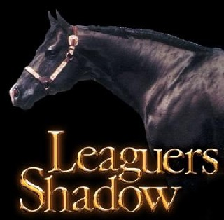 leaguers_shadow_360x353.jpg?132977947512